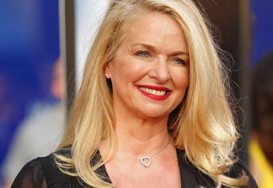 TV star and an actress, Donna Dixon